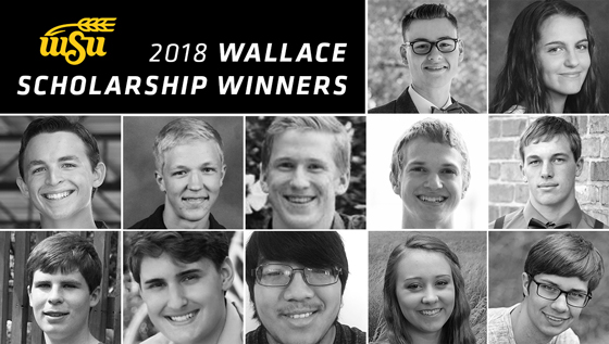 WSU College of Engineering awards $28,000 each to twelve Wallace Scholarship recipients