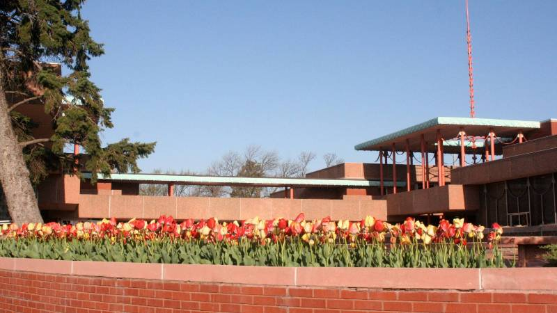Corbin Education Center with Tulips