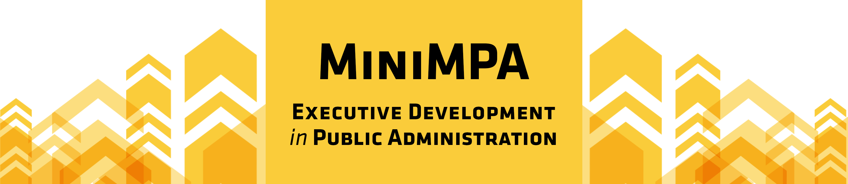 MiniMPA Executive Development in Public Administration