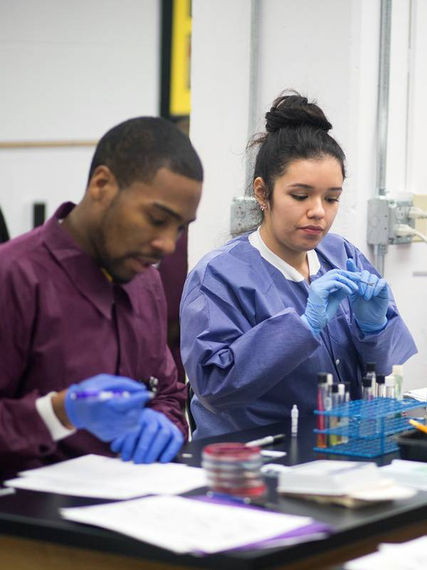 Medical Laboratory Sciences graduate students in lab.