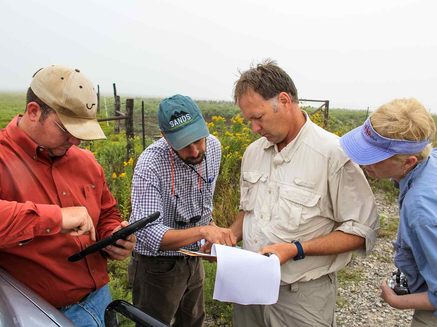 Students working in the field.