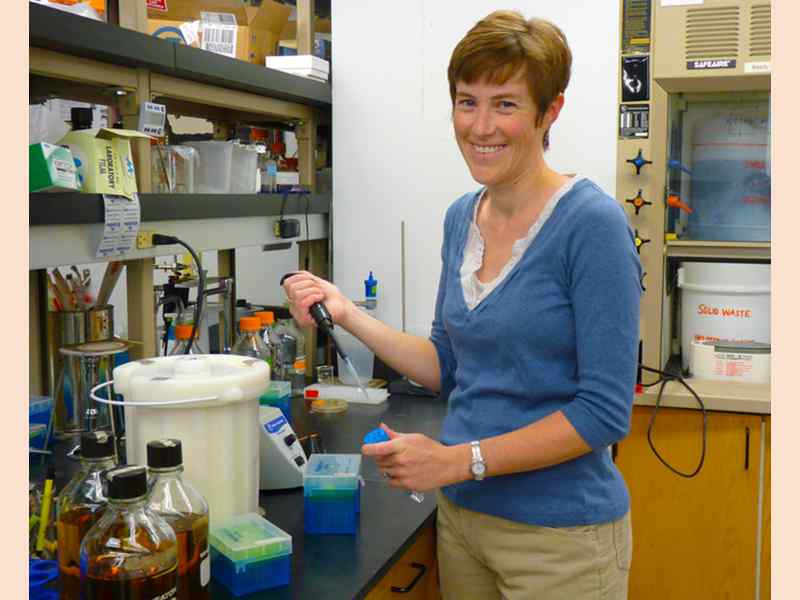 Moriah Beck, assistant professor of chemistry, works on cancer research.