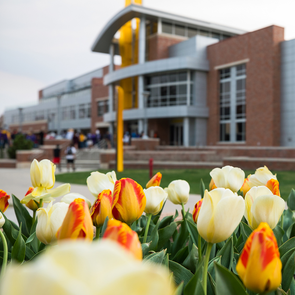 Tulips bloom in front of the Rhatigan Student Center's east entrance