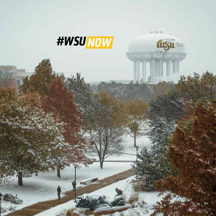 WSU Now website