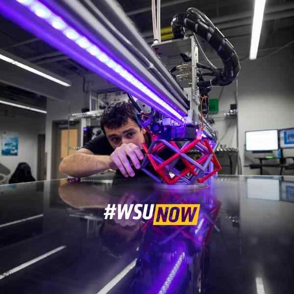 WSU Now website