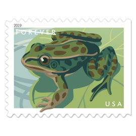 image of frogs postage stamp