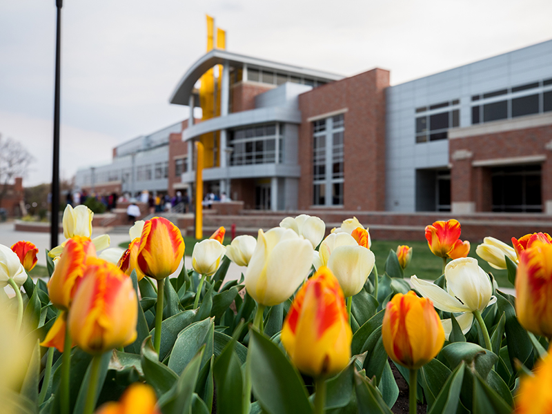 tulips in front of rsc